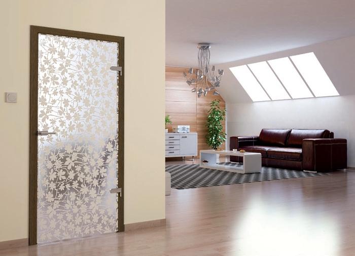 steklo-dveri-001