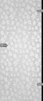 steklo-dveri-003